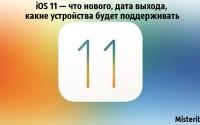 IMG_3606