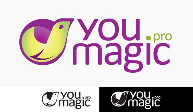 YMpro_logo_small
